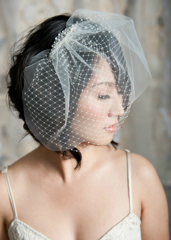 Wedding Hairstyles With Birdcage Veil Pictures