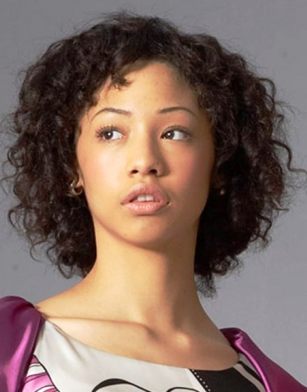 African American Short Curly Hairstyles 2