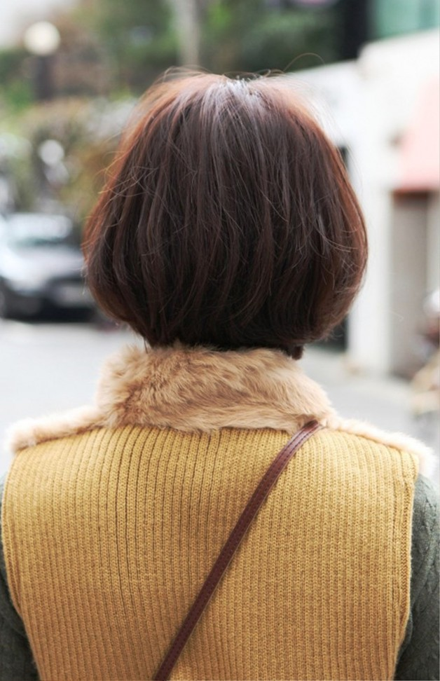 Back View Of Cute Asian Bob Hairstyle