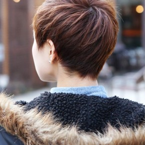 Back View Of Short Layered Boyish Cut
