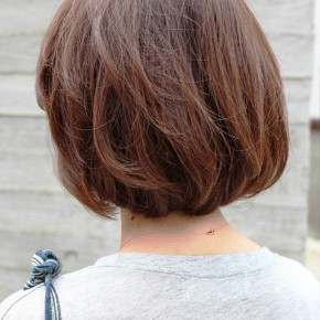 Back View Short Brown Bob Hairstyle