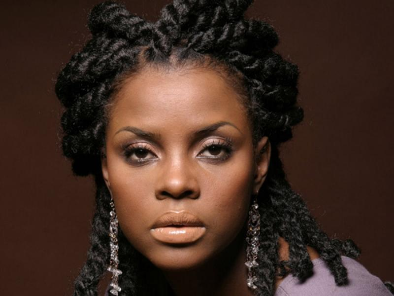 Pictures Of Braid Hairstyles For Black Women 2013