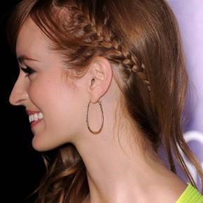 Braided Hairstyles Curly Hair