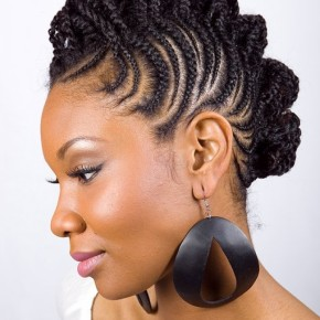 Braided Hairstyles For African Americans 2012