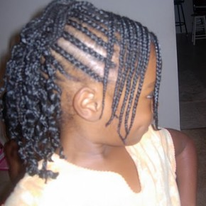 Braided Hairstyles For African Americans Little Girls