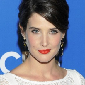 Cobie Smulders Sleek Black Updo Hairstyle