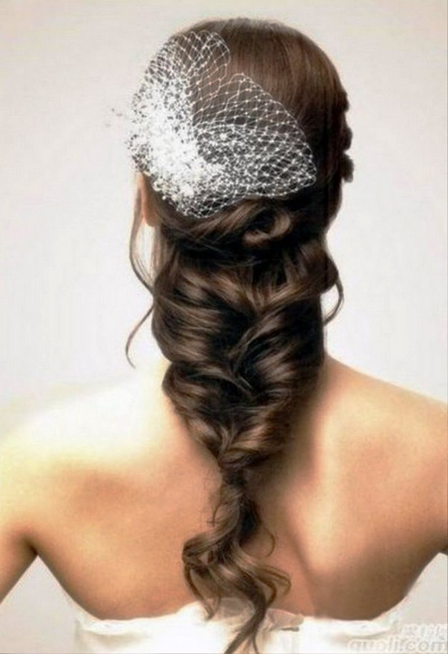 Long Bridal Hairstyles 2013 With Veil