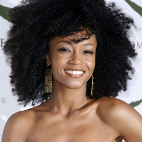 Natural Hair Styles Yaya Dacosta