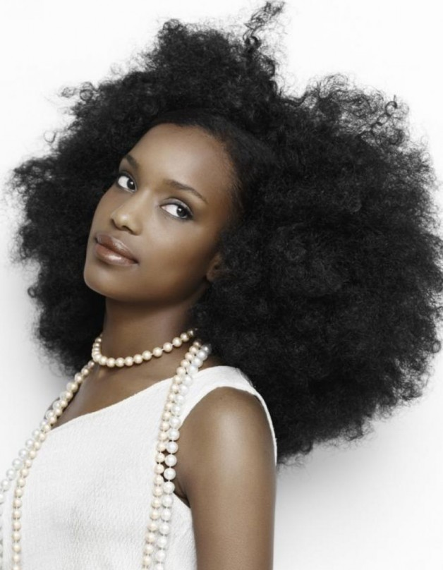 Natural Hairstyles Afro