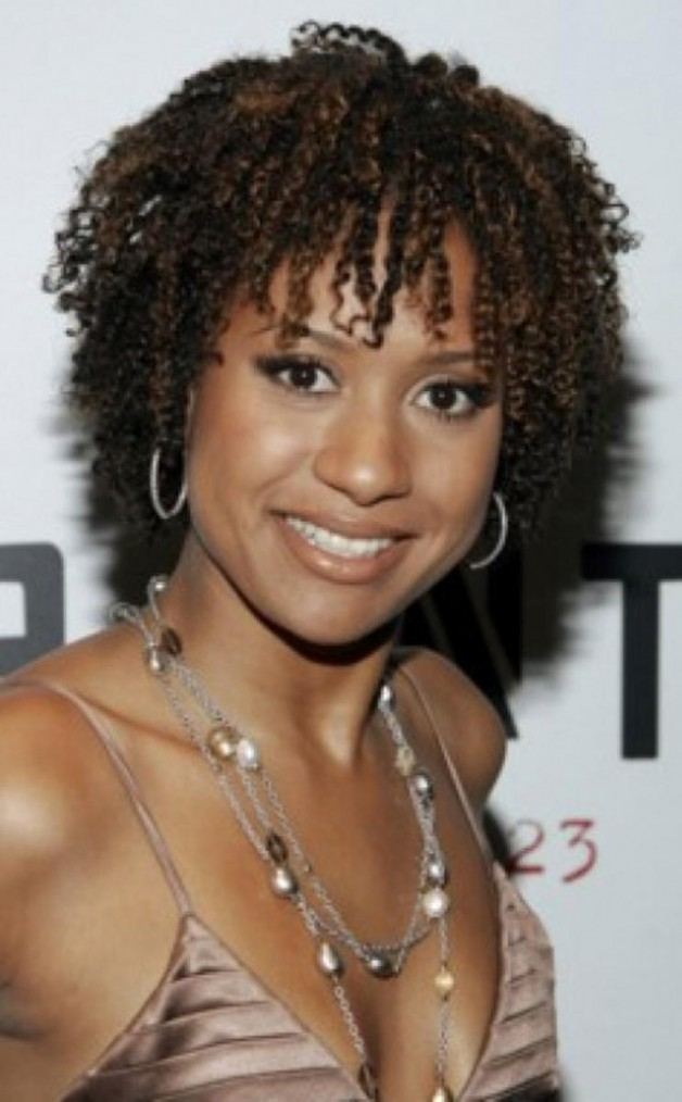 natural hairstyles for black women 2013 behairstylescom
