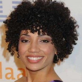 Short Curly Hairstyles for Black Women 2013