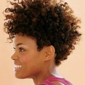 Groovy Curly Hairstyles Page 46 Curly Hairstyles And Cuts African Short Hairstyles For Black Women Fulllsitofus