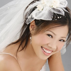 Weddings Hairstyles 2011