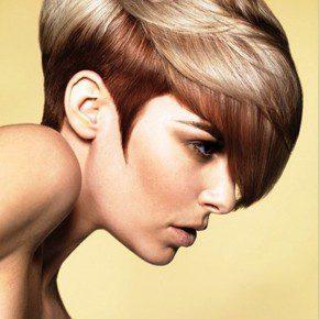 Hair Colors 2013