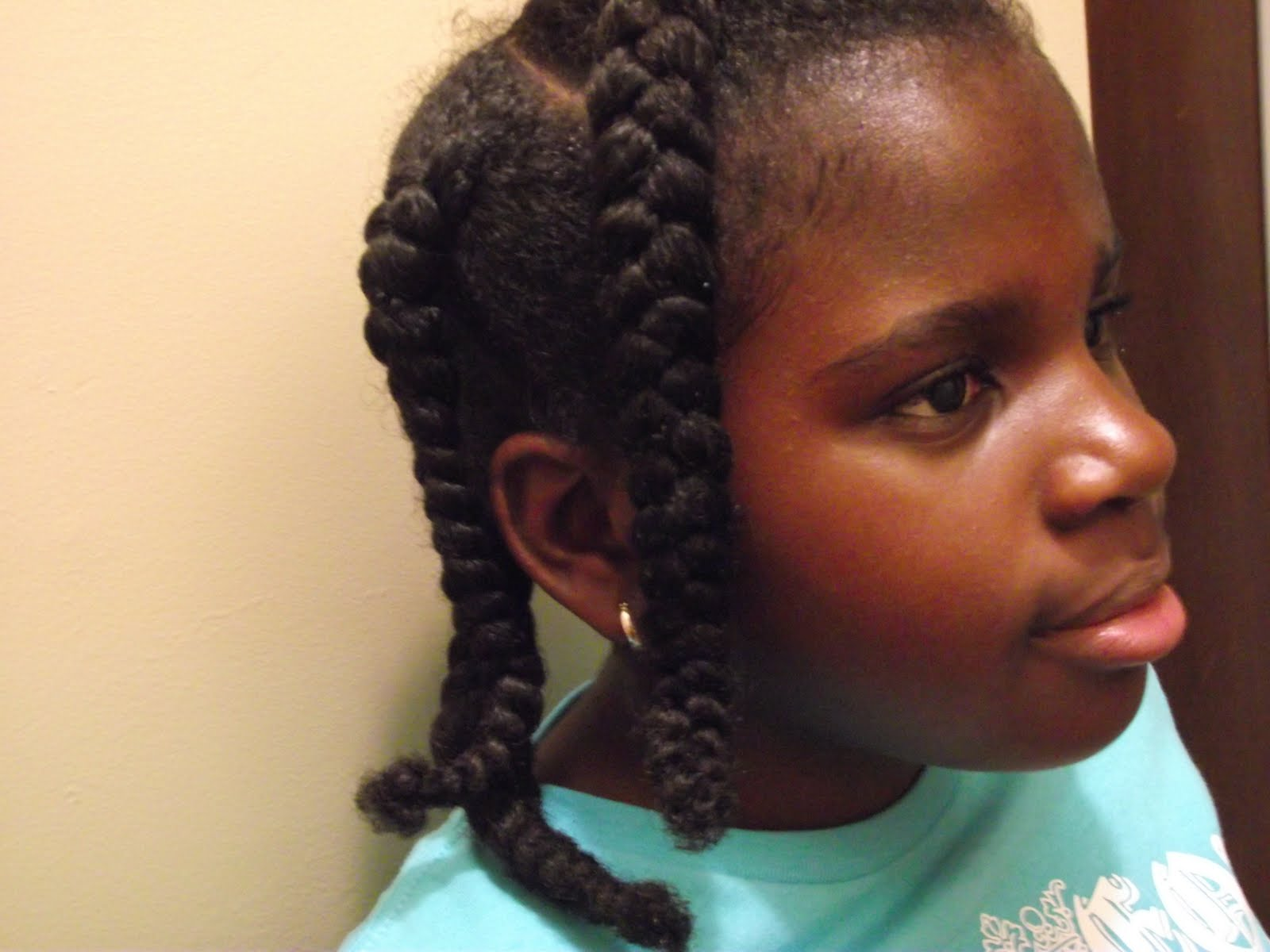 pictures of braided hairstyles for girls with natural hair