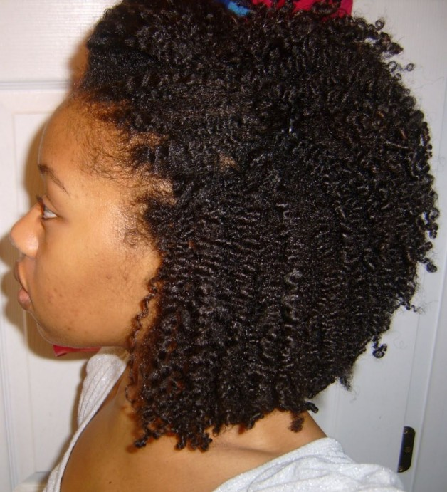 Natural Hairstyles Coils Behairstyles Com